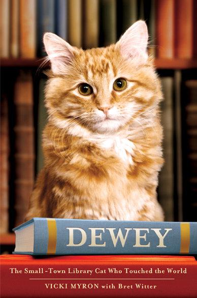 Dewey Lee Más Libros / Vicki Myron